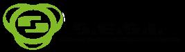 S.E.S.I. - Sistemas eletrónicos segurança integrada